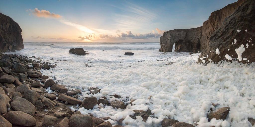 La mousse recette miracle pour l 39 ann e 2016 les secrets - Camping port blanc saint pierre quiberon ...